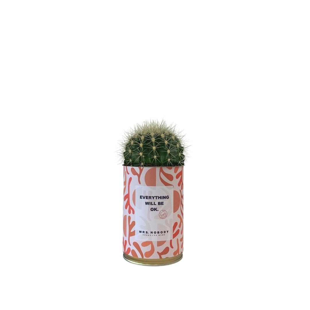 Cactus ou Succulente - Everything Will Be Ok - Cactus Boule