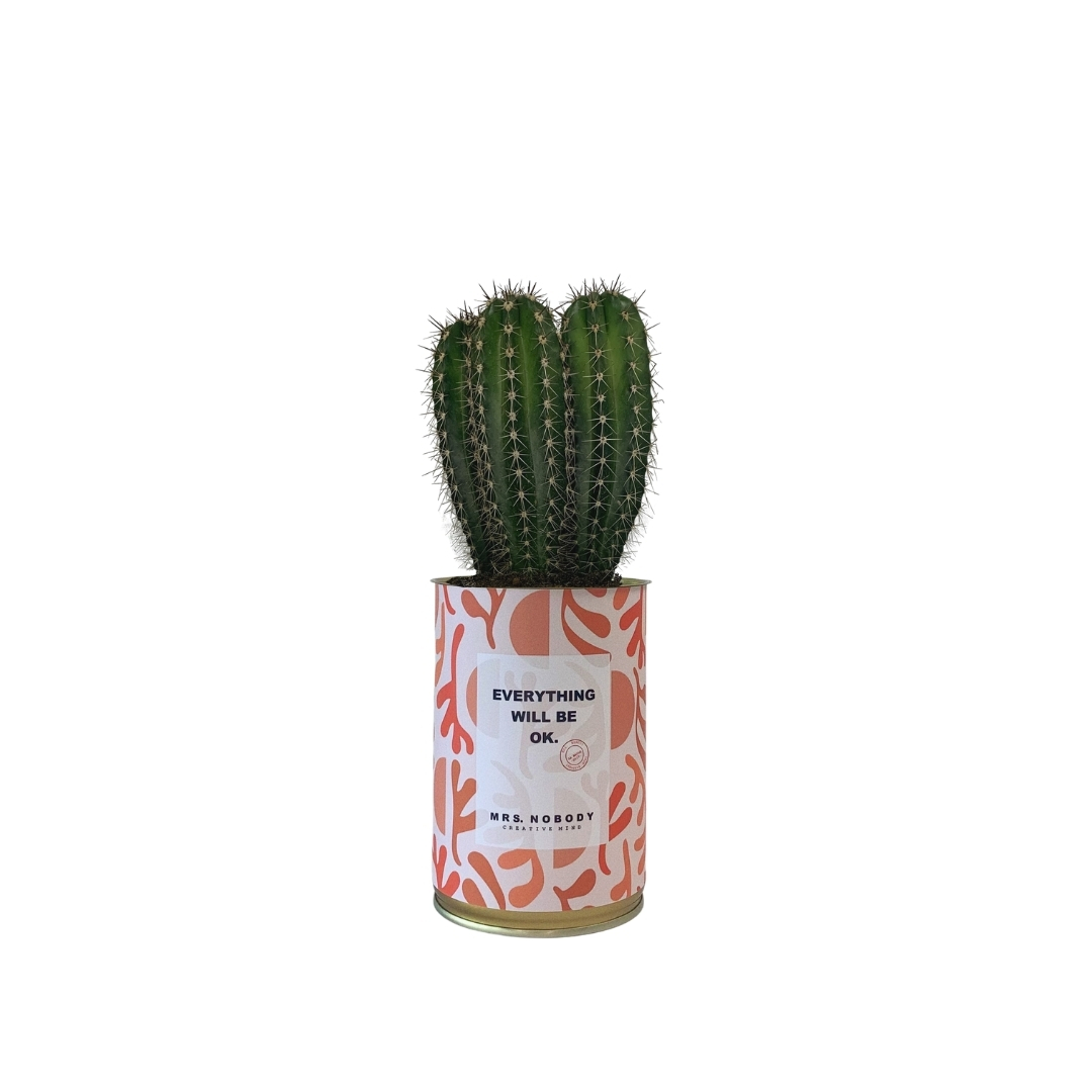 Cactus ou Succulente - Everything Will Be Ok - Cactus Colonne