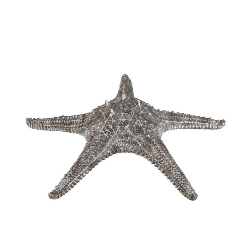 Etoile de mer résine gris/argent H10cm