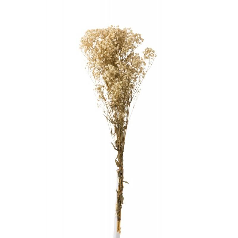 Bouquet gypsophile séché écru H84cm