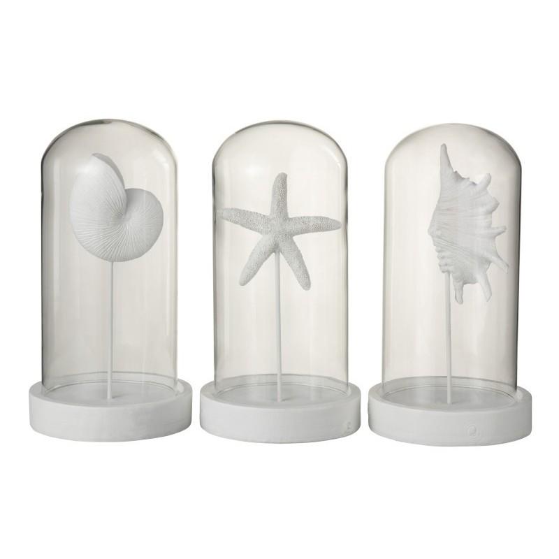 Cloche coquillages résine/verre blanc H29cm - Lot de 3