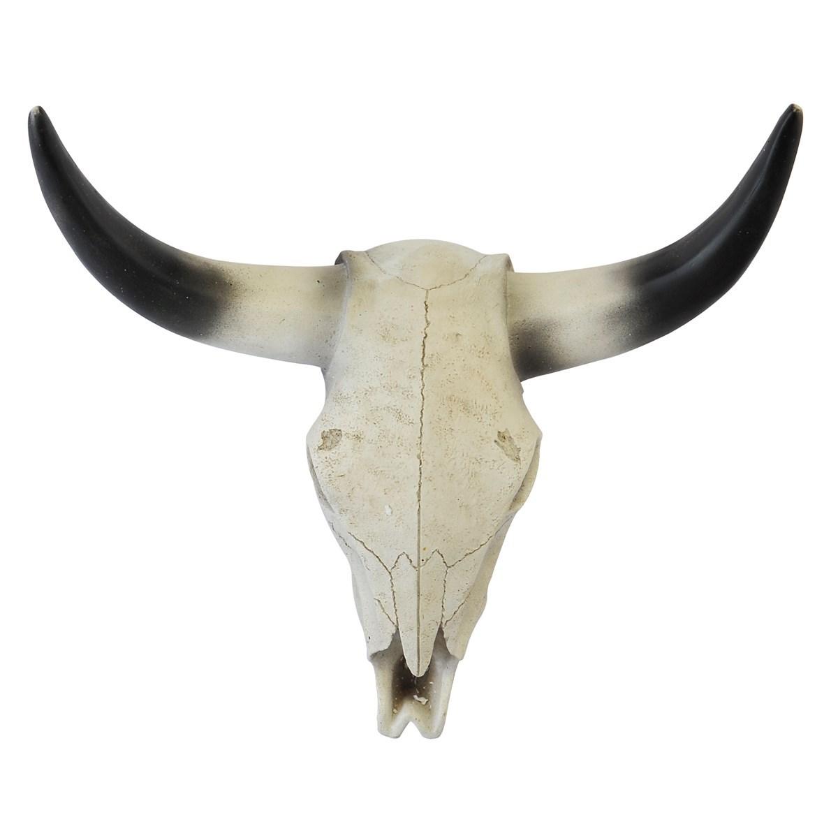 Crâne de buffle en Résine Blanc cassé