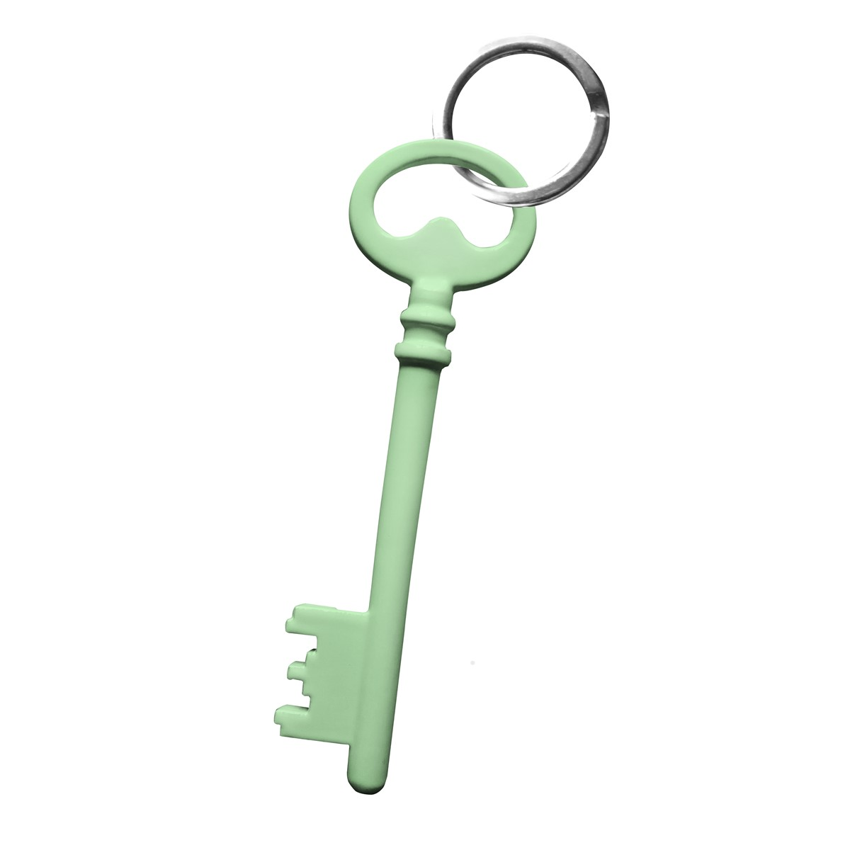 Porte clefs en acier vert chèvrefeuille