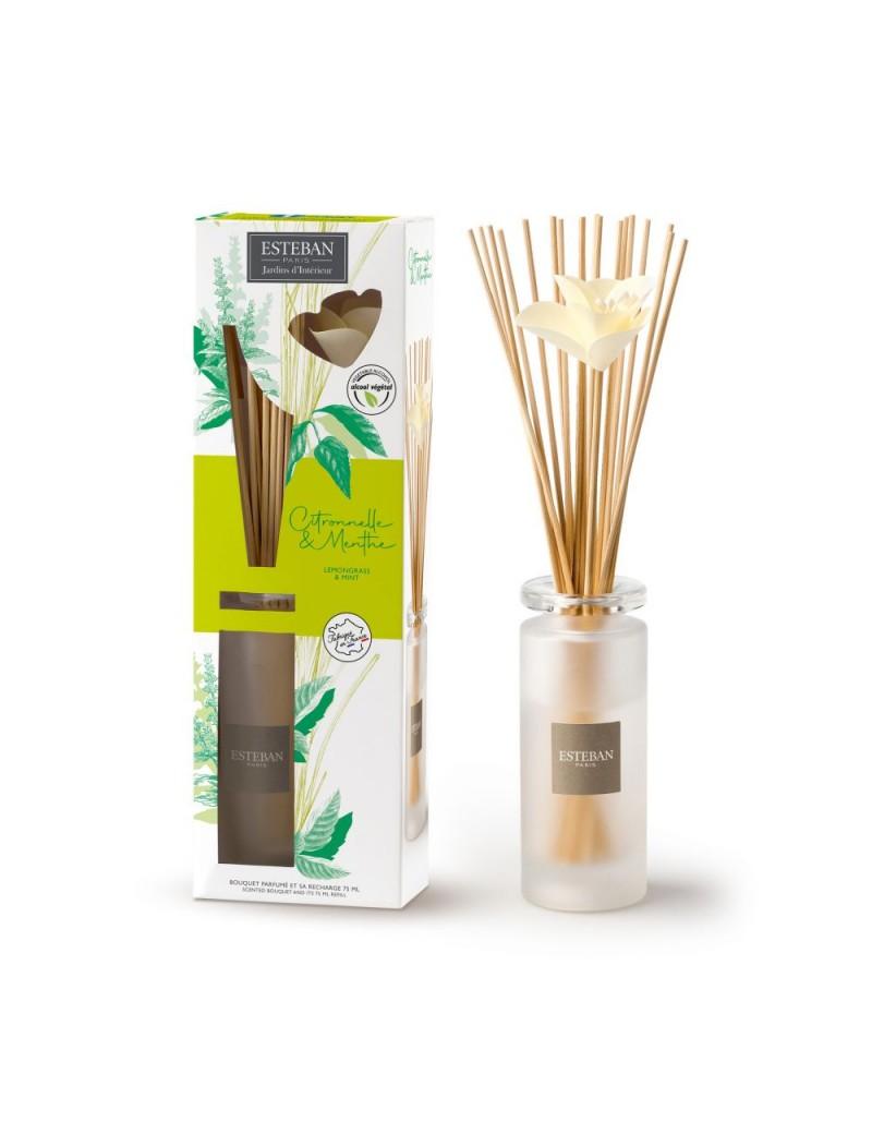 Bouquet parfumé soliflore avec recharge 75ml citronnelle et menthe
