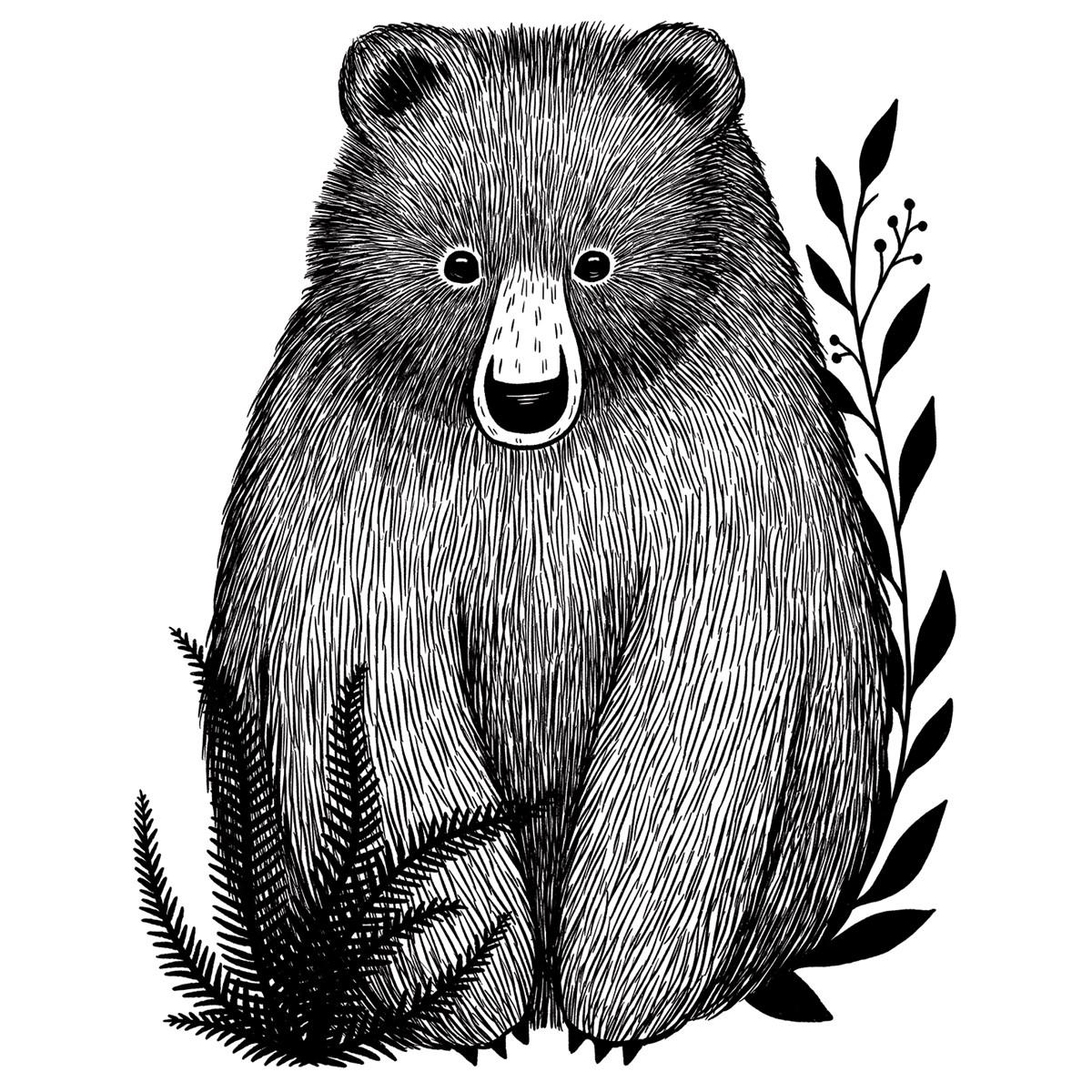 Sticker xl bébé ours multicolore