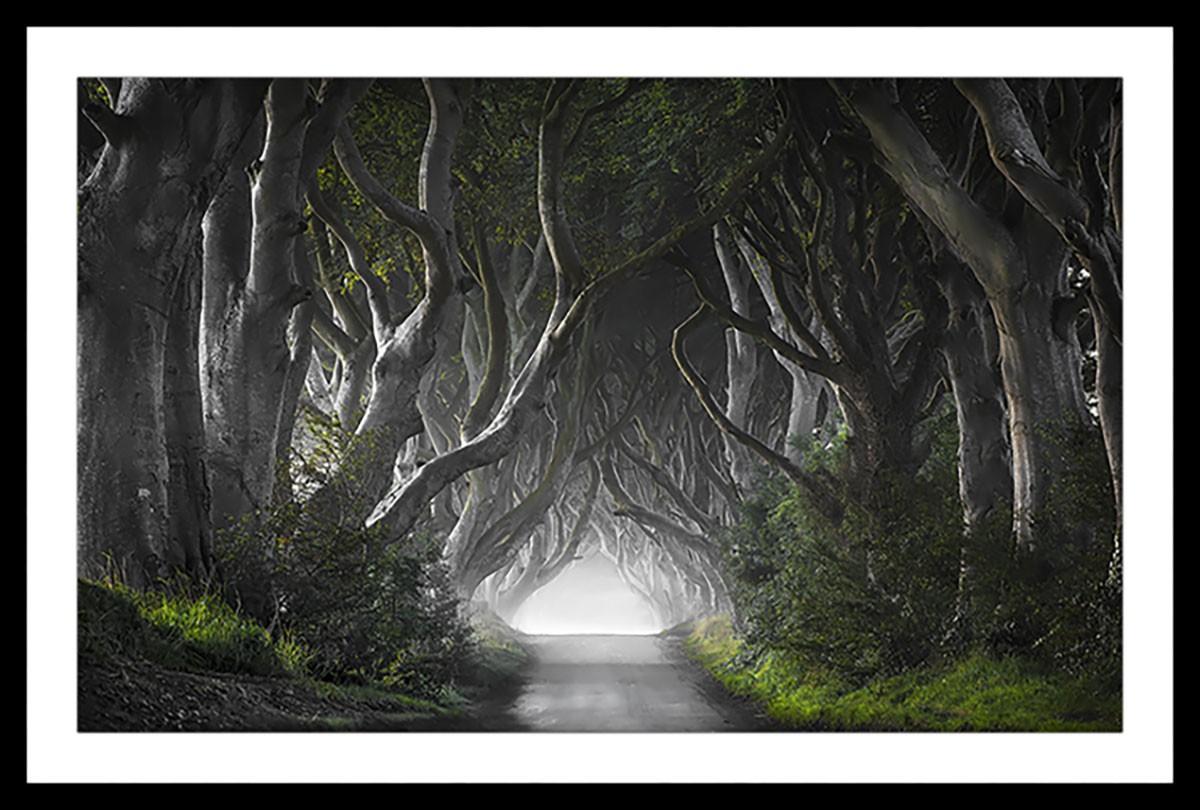 Affiche paysage route de l'irréel Affiche sous cadre noir