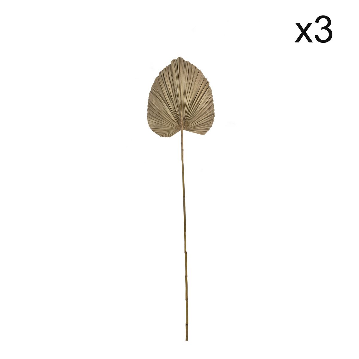 Set de 3 décoration en feuilles de palmier