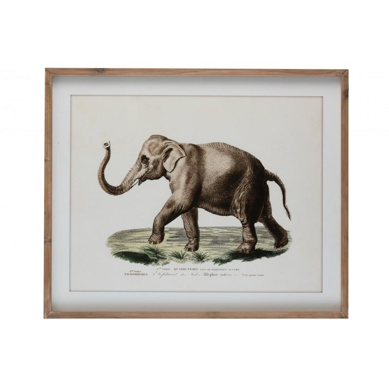Cadre éléphant bois et verre 80x66cm