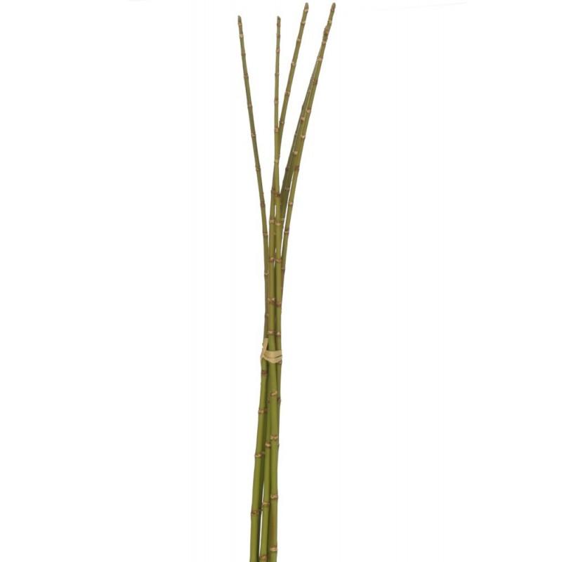 Botte de bambou vert H110cm