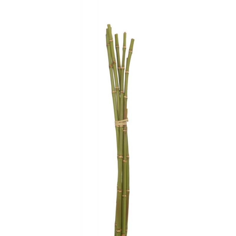Botte de bambou vert H72cm