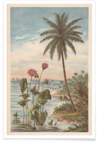 LOTUS FLOWERS - Affiche en Gris & Marron/60x90