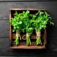 HERBES - Tableau sur toile herbes fraiches 30x30cm