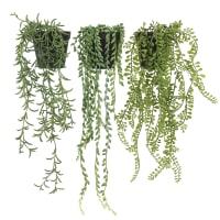 PLANTE GRASSE - Lot de 3 succulentes retombantes artificielles en pot noir 60cm